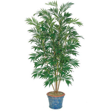 Picture of Bamboo 8' Potted Palm Tree