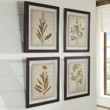 Picture of Dyani 4 Piece Floral Wall Art Set
